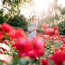 Dreamy Maternity Portraits amongst the Southern Oaks – The Hart Family